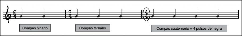 Compases simples de ejemplo